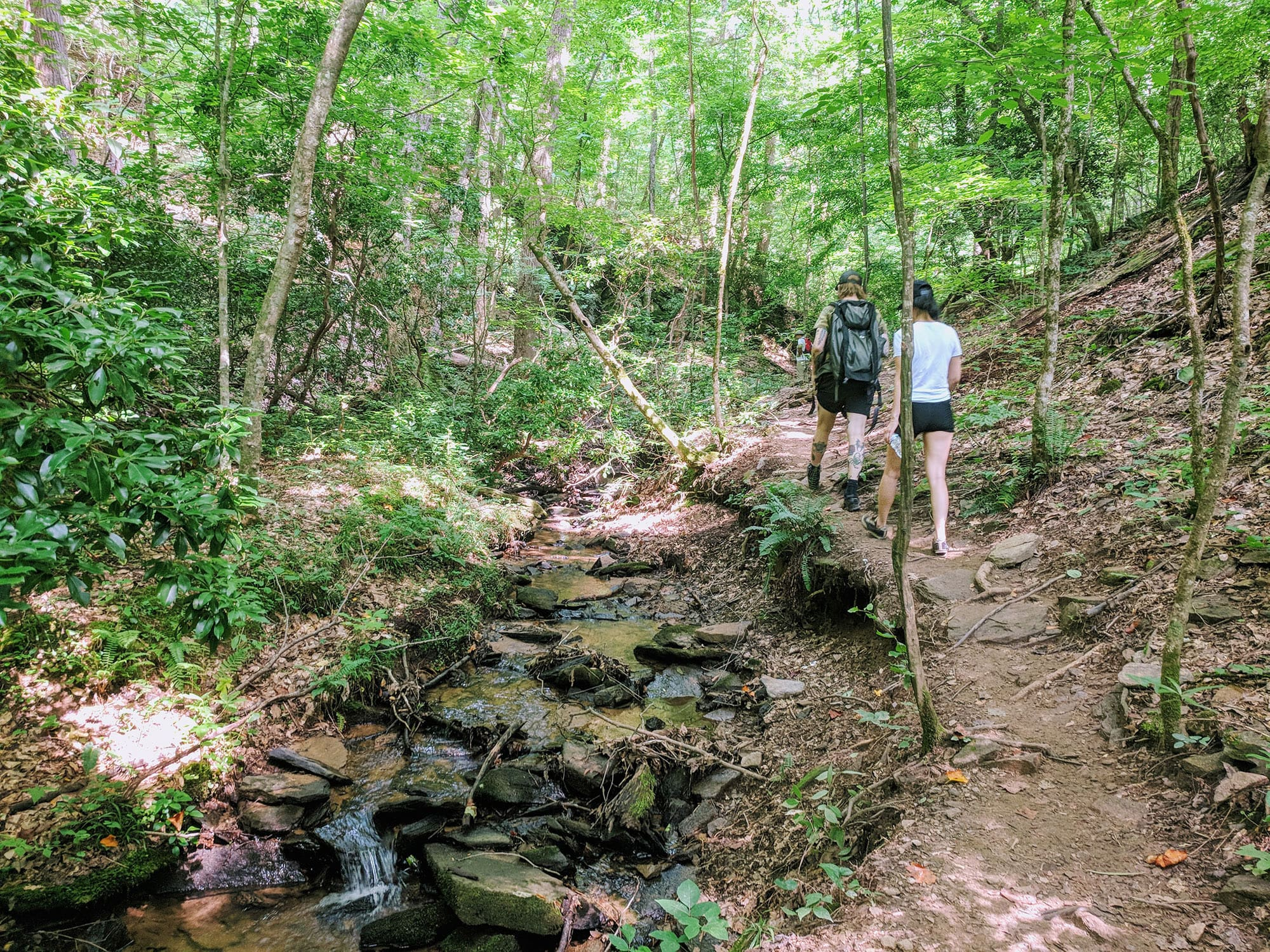 Hiking on the East Palisades Trail in Atlanta