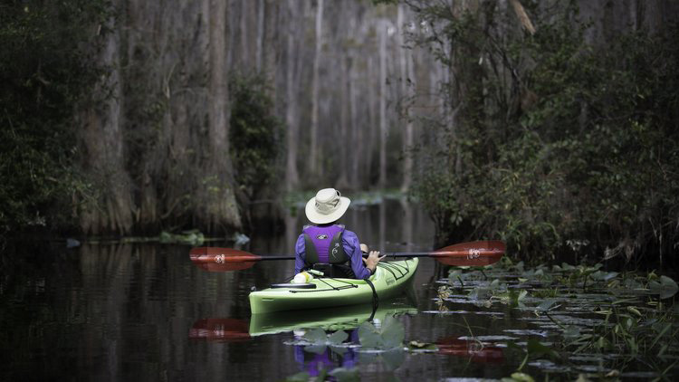 Kayaking in the Okefenokee Swamp. Photo courtesy of Georgia Conservancy