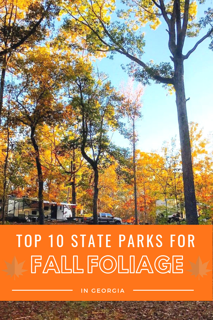 Top 10 State Parks for Fall Foliage in Georgia