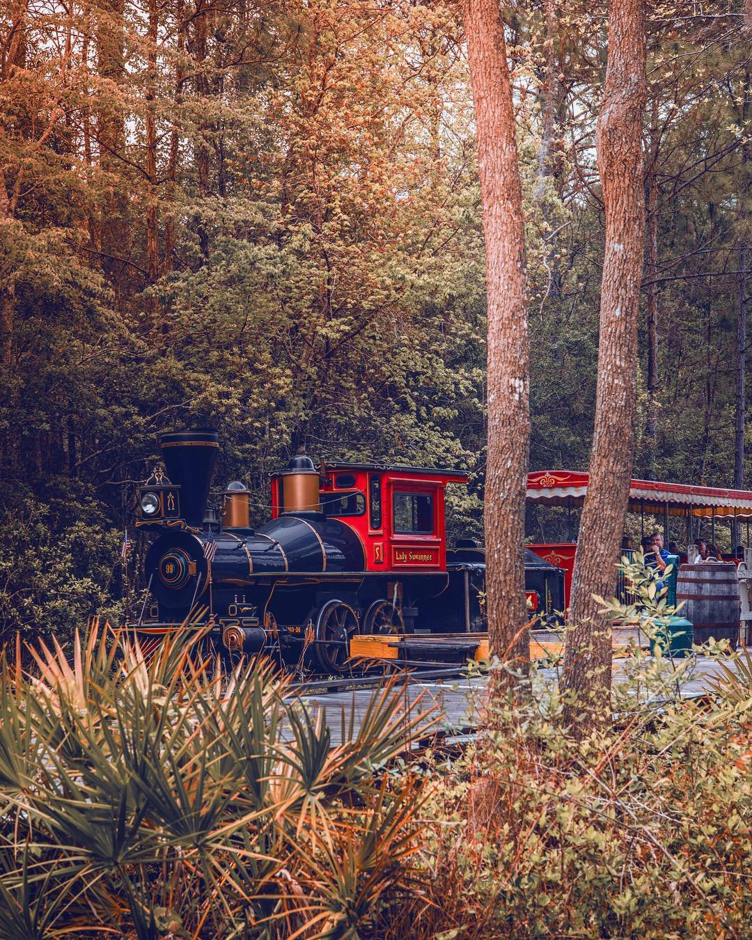 Okefenokee Swamp Park train. Photo by @tolgy75