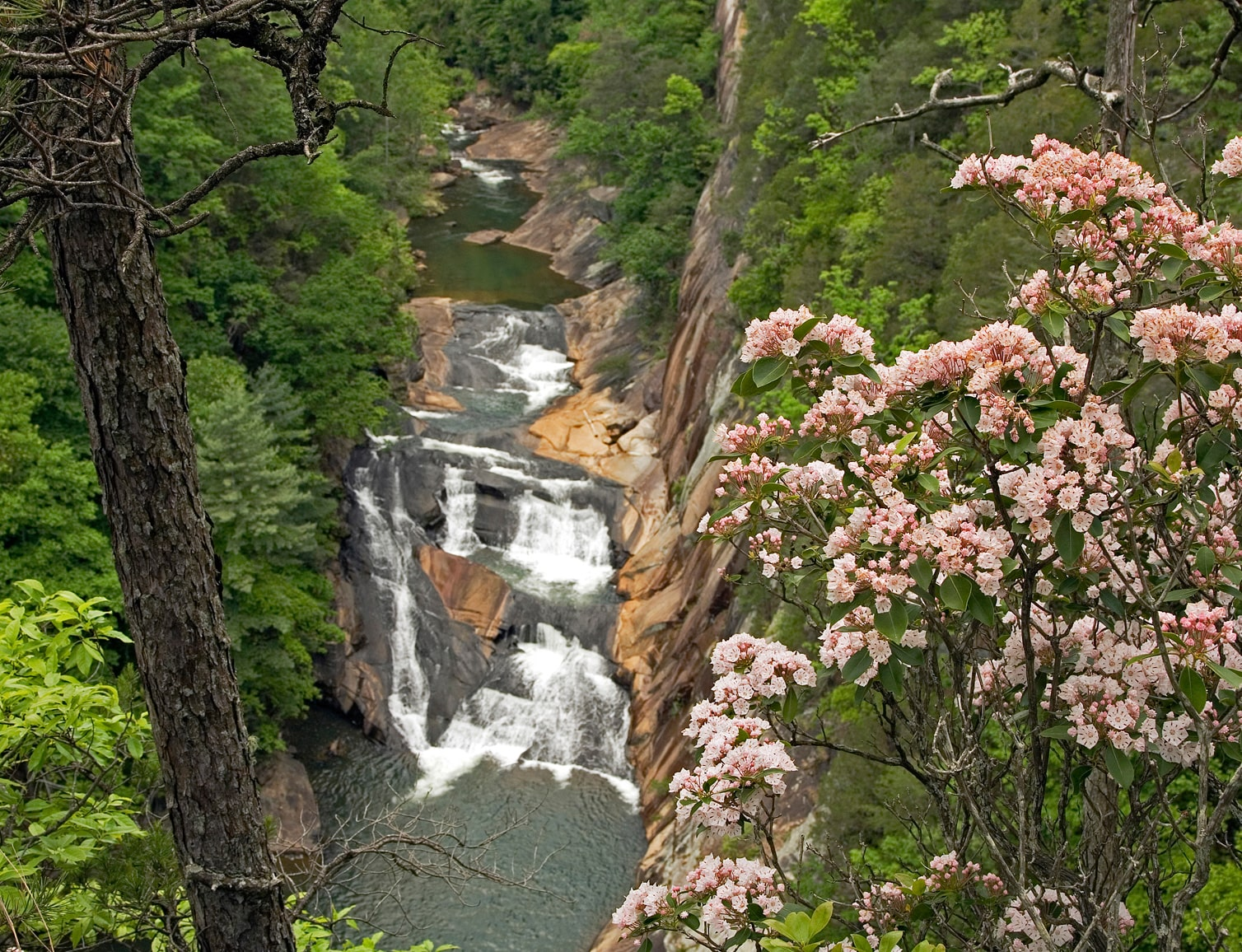 L'Eau d'Or Falls at Tallulah Gorge State Park