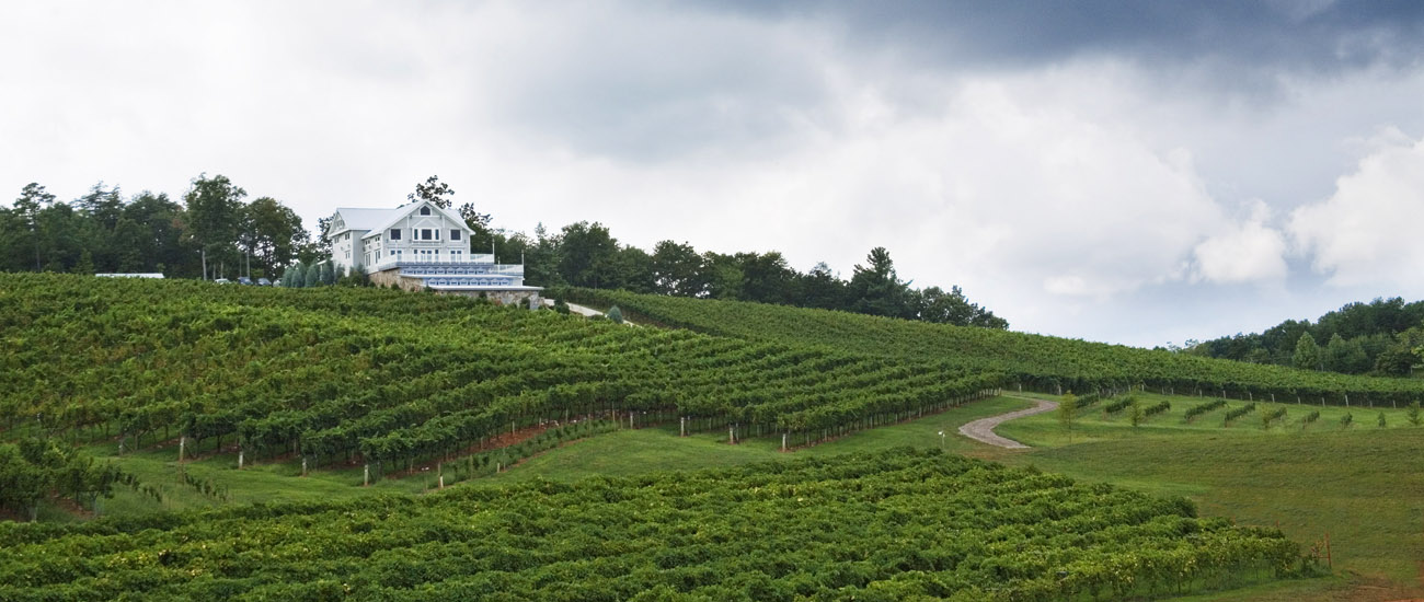 Frogtown Cellars. Photo courtesy of Dahlonega-Lumpkin County Chamber of Commerce.