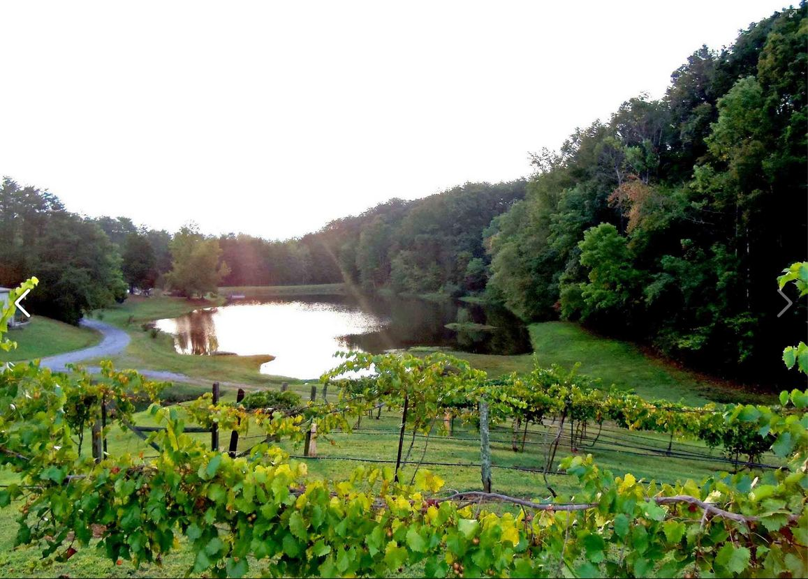 The Georgia Winery in Ringgold