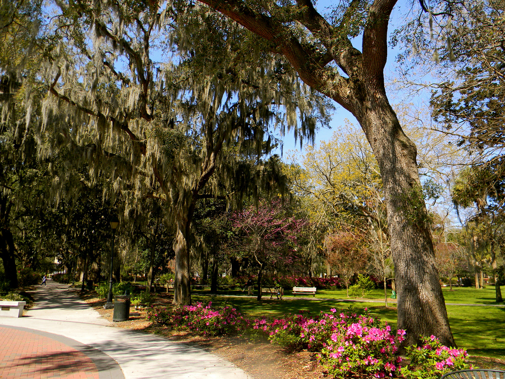 Four Things You Can Only Do in Savannah | Official Georgia Tourism ...