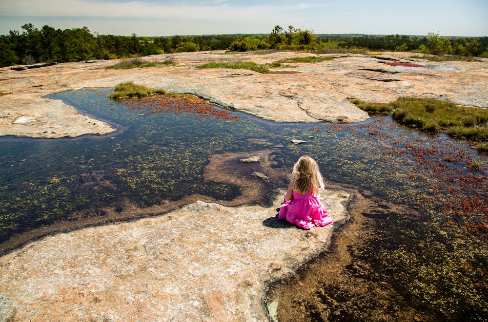 Arabia Mountain. Copyright: Stacy Funderburke