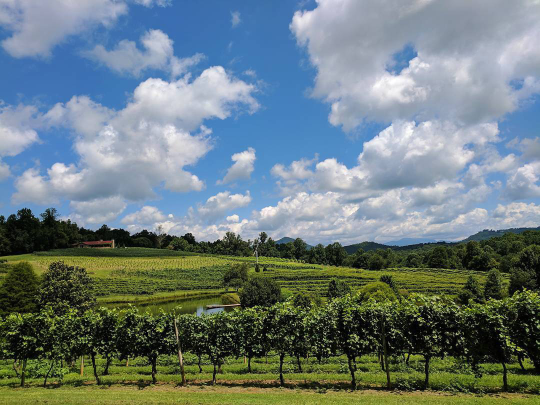 Georgia Wineries With Breathtaking Views Official
