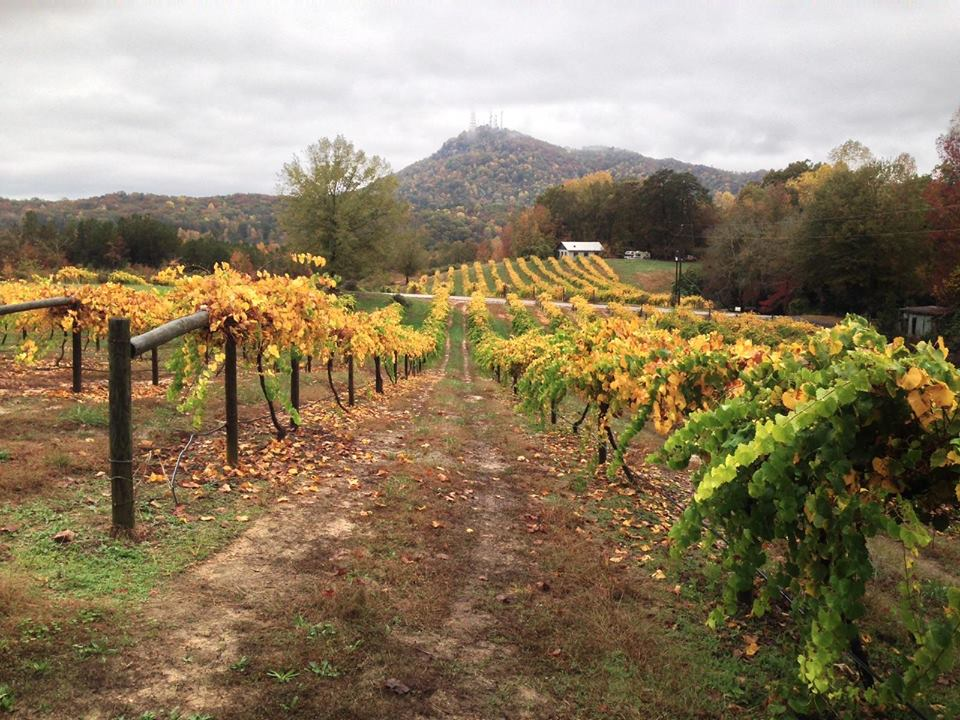 A fall view of Currahee Vineyard & Winery in Toccoa, Georgia