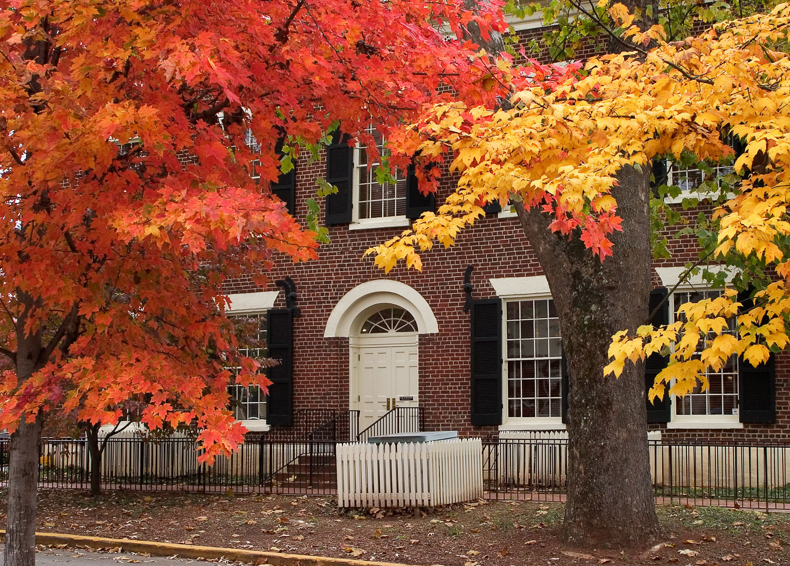 Best Fall Fun In Dahlonega And Dawsonville Official