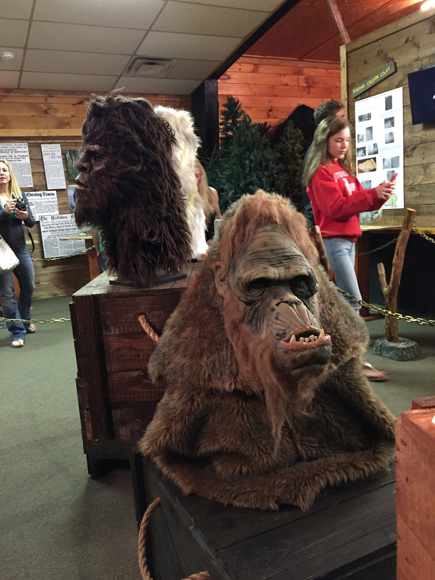 Expedition: Bigfoot in Cherry Log, Georgia