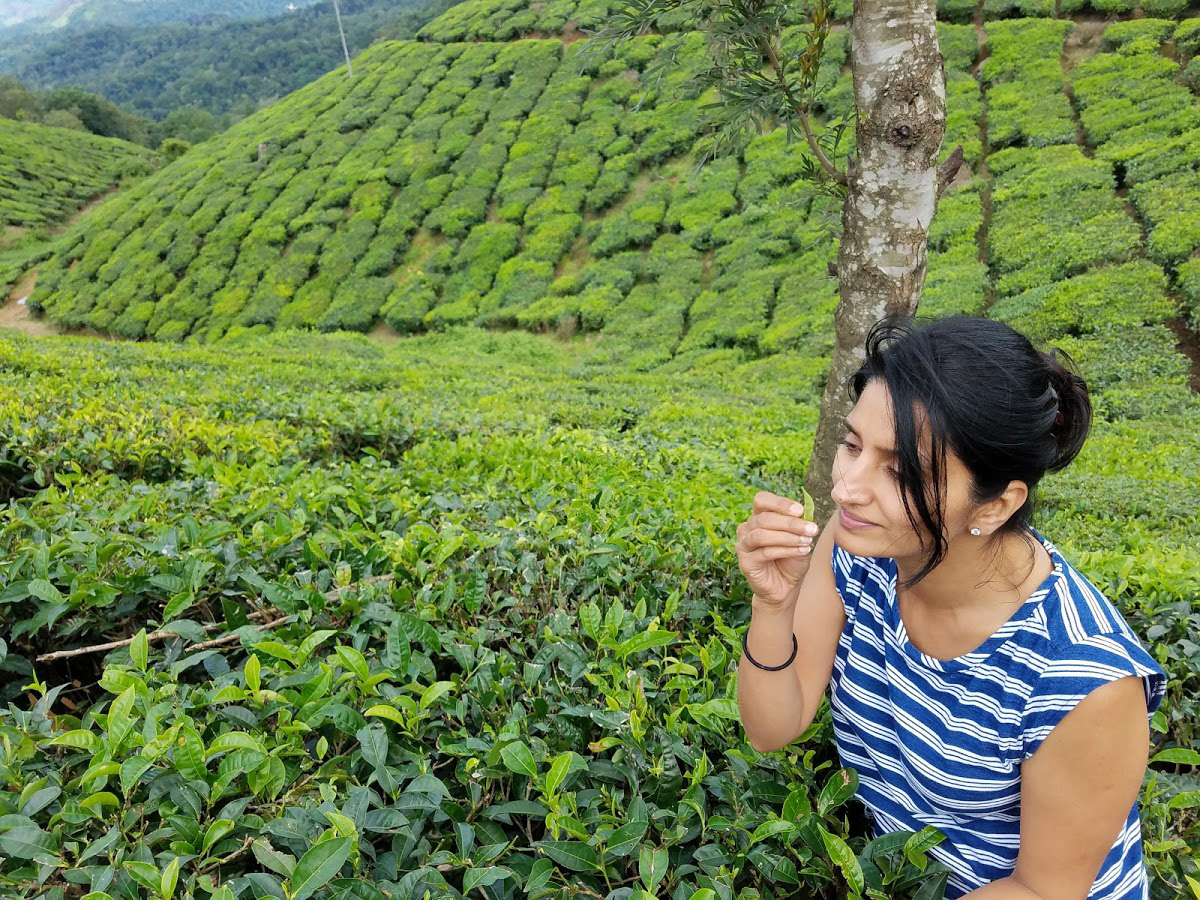 Monica Sunny visiting a tea plantation in India