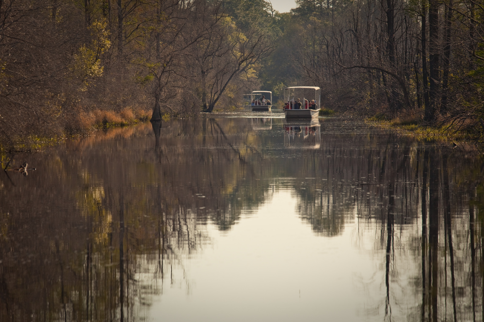 Swamp boats in the Okefenokee