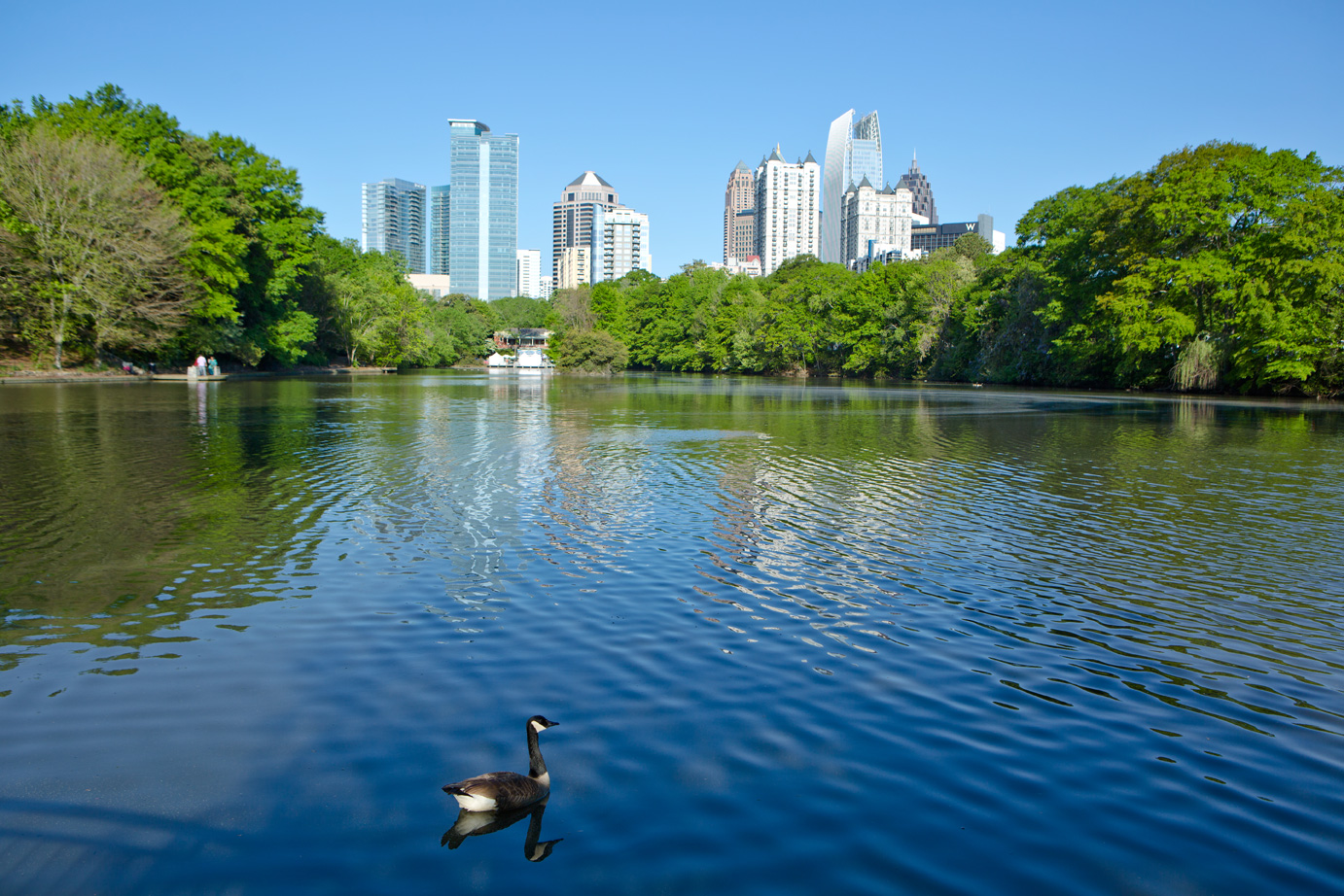Summer time in the city at Atlanta's Piedmont Park