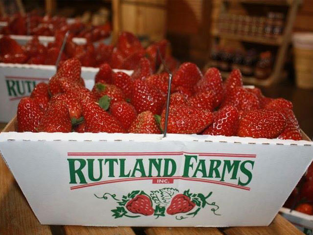 Rutland Farms strawberries