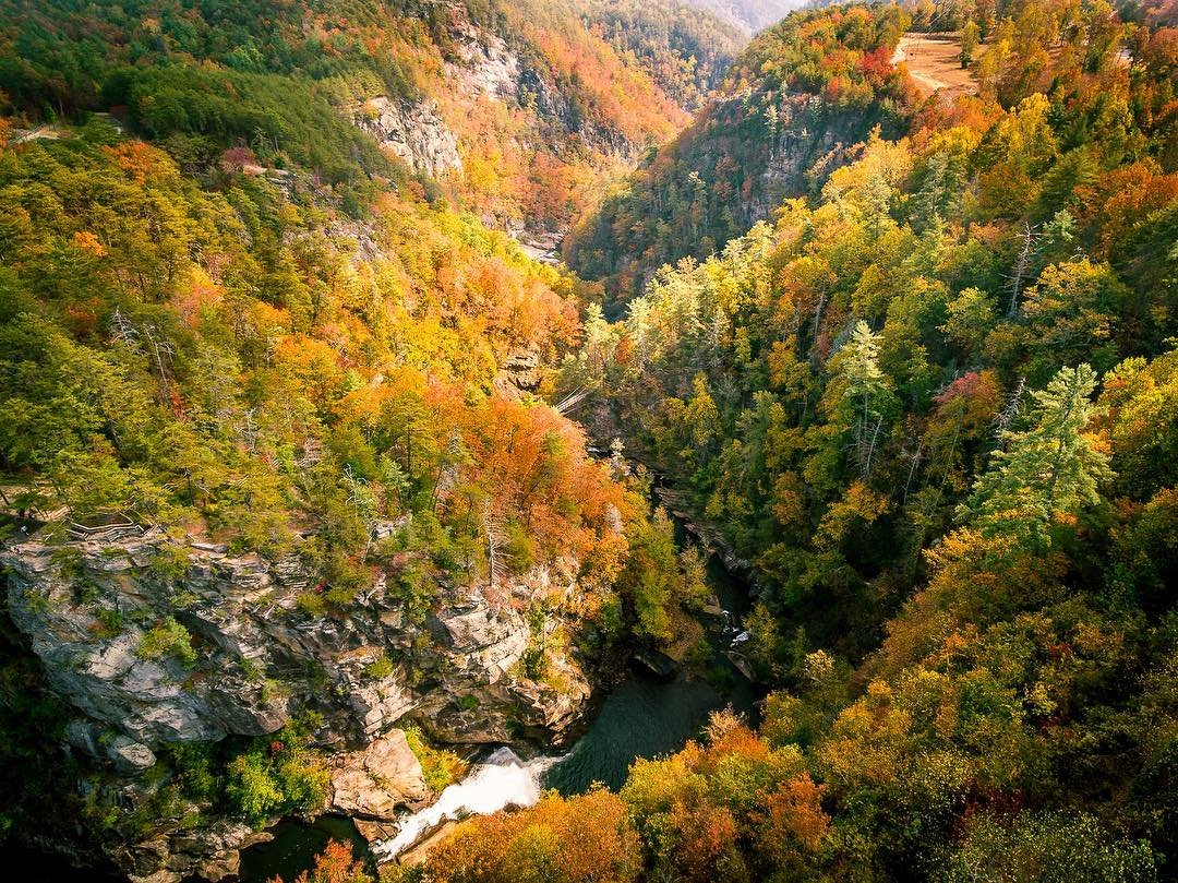 How To Experience The Best Of Georgia S Beautiful Fall Colors 2020