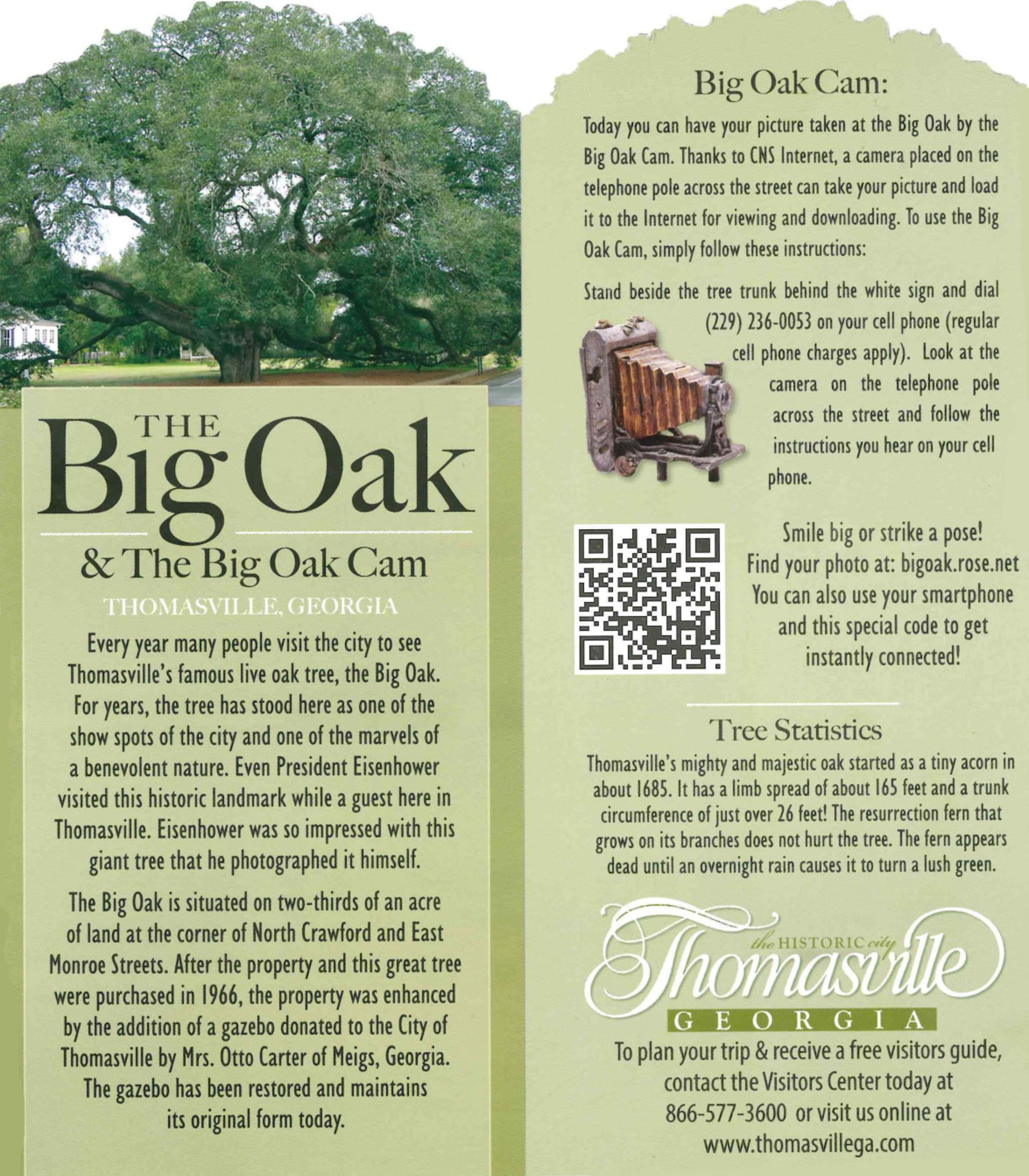 Big Oak and Big Oak Cam brochure