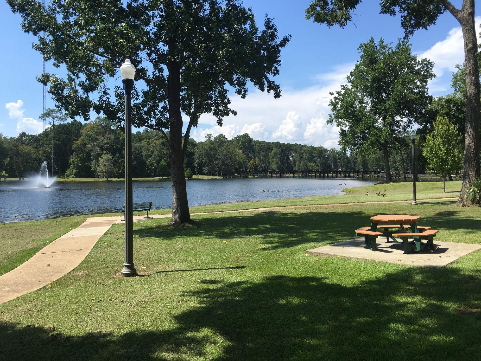 Cherokee Lake Park Official Georgia Tourism Amp Travel