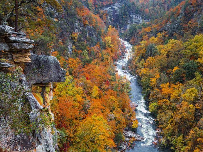 Tallulah Gorge State Park. Photo by @thegreatoutdoorsphoto