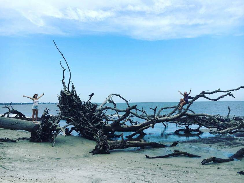 Driftwood Beach on Jekyll Island. Photo by Ashlie Jade, @stiingwray