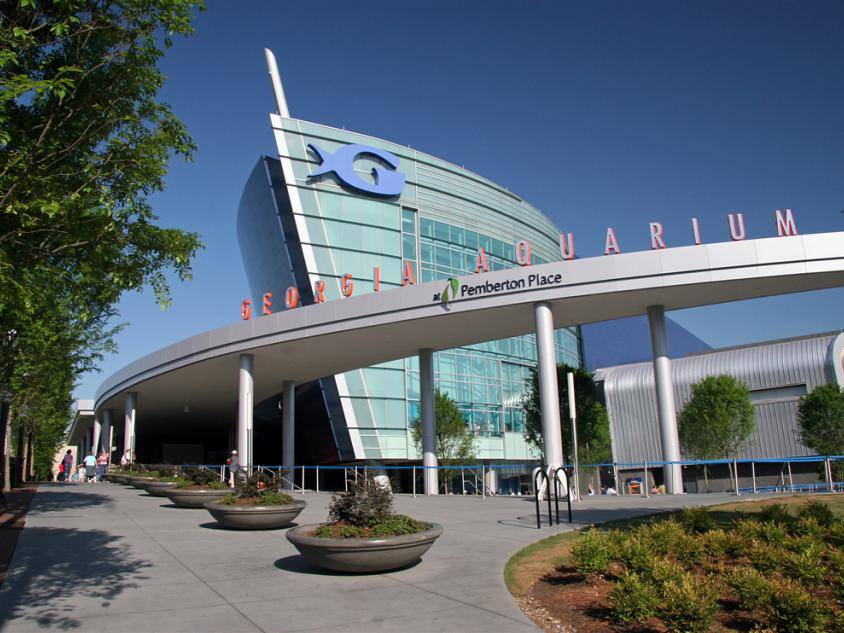 Georgia Aquarium in Atlanta