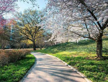 Piedmont Park in spring. Photo by Kimie Yates, @kimieyates
