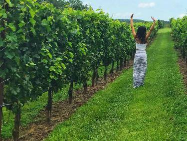 Woman walking between the vines at Yonah Mountain Vineyards & Winery in Cleveland, Georgia. Photo by @teeenaa