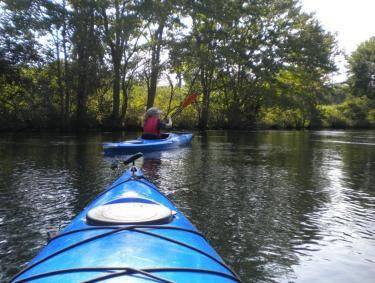 Kayaking the Canal