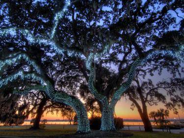Jekyll Island Holiday Lights