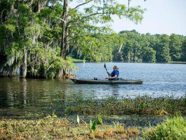 Kayaking Lake Blackshear in Cordele, Georgia