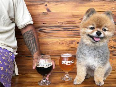 Service Brewing Company pet-friendly