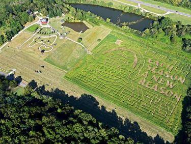 The Enchanted MAiZE corn maze in Flintstone, Georgia