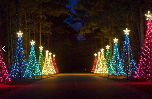 These 8 small georgia towns do christmas right official - Callaway gardens festival of lights ...