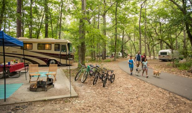 9 Great Spots to Camp in Georgia | Official Georgia Tourism ... on andersonville prison georgia map, north georgia state parks map, fdr state park georgia map, pa state campgrounds map, elijah clark state park map, lake blackshear state park map, georgia national parks and monuments, ga state parks map, taliaferro county ga map, blue ridge mountains georgia map, georgia state map major cities, cleveland ga map, chehaw park campground map,