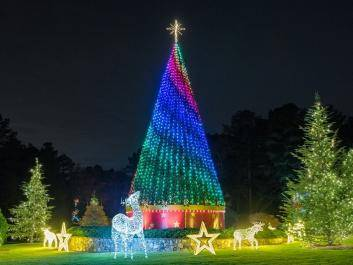 Magical Nights of Lights - 25th Anniversary