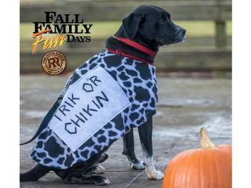 """""""Not-So-Spooky"""" Halloween Festival at The Rock Ranch for Fall Family Fun Days"""