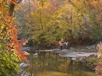 Victoria Bryant State Park trail