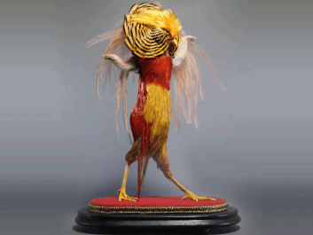"""Past"", Enrique Gomez de Molina, 19""h x 12""w x 6""d, golden pheasant, emu feathers, rabbit fur, 2017"
