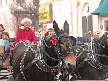 Olde Town Christmas Party, free carriage rides