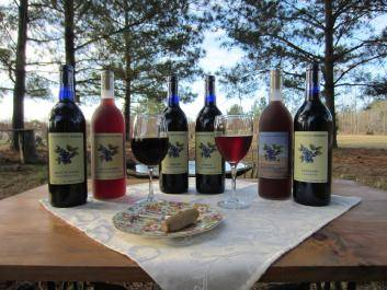 Here are our six brands of 100% Blueberry Wines