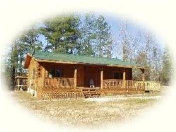 Shade Tree Cabins
