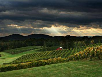 Dahlonega's First Family Farm Winery is Three Sisters Vineyards