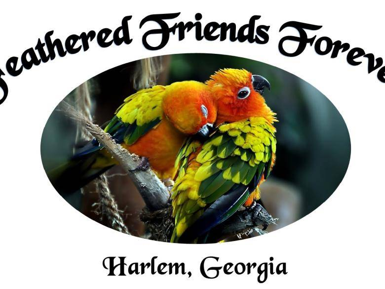Feathered Friends Forever Rescue/Refuge, Inc  | Official