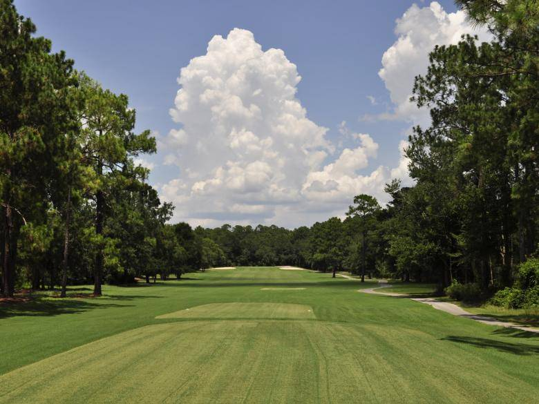 Wallace Adams Golf Course At Little Ocmulgee Official Georgia Tourism Travel Website Explore Georgia Org