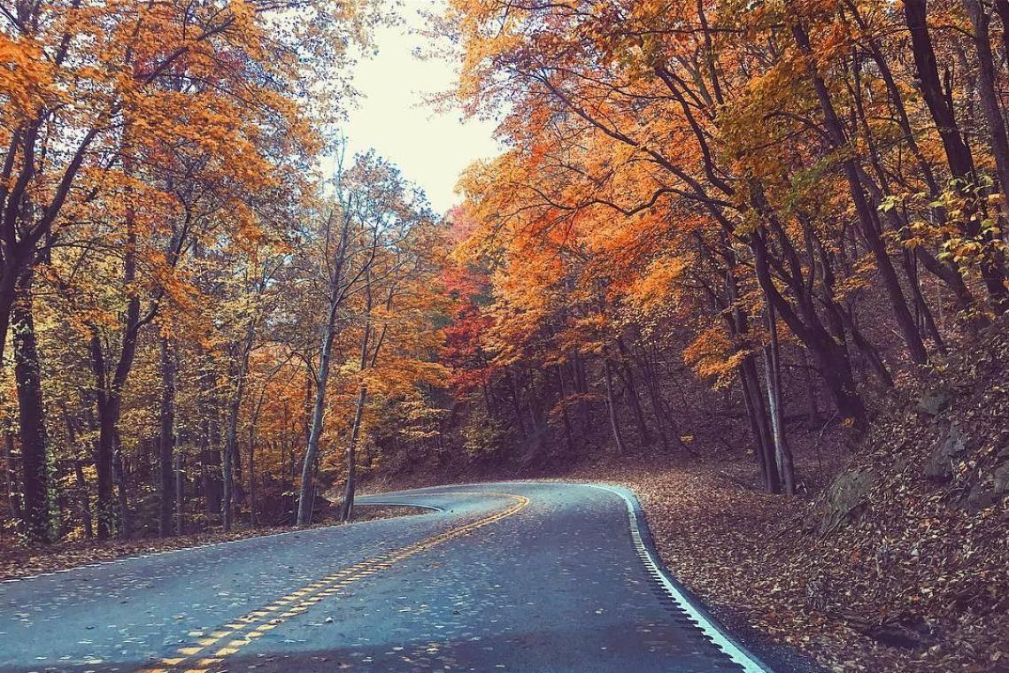 10 Georgia State Parks For Fall Color Official Georgia