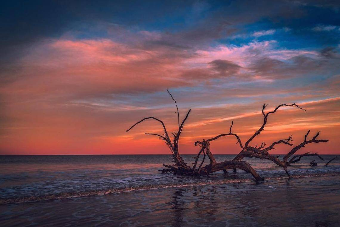 10 Must Dos On Jekyll Island Official