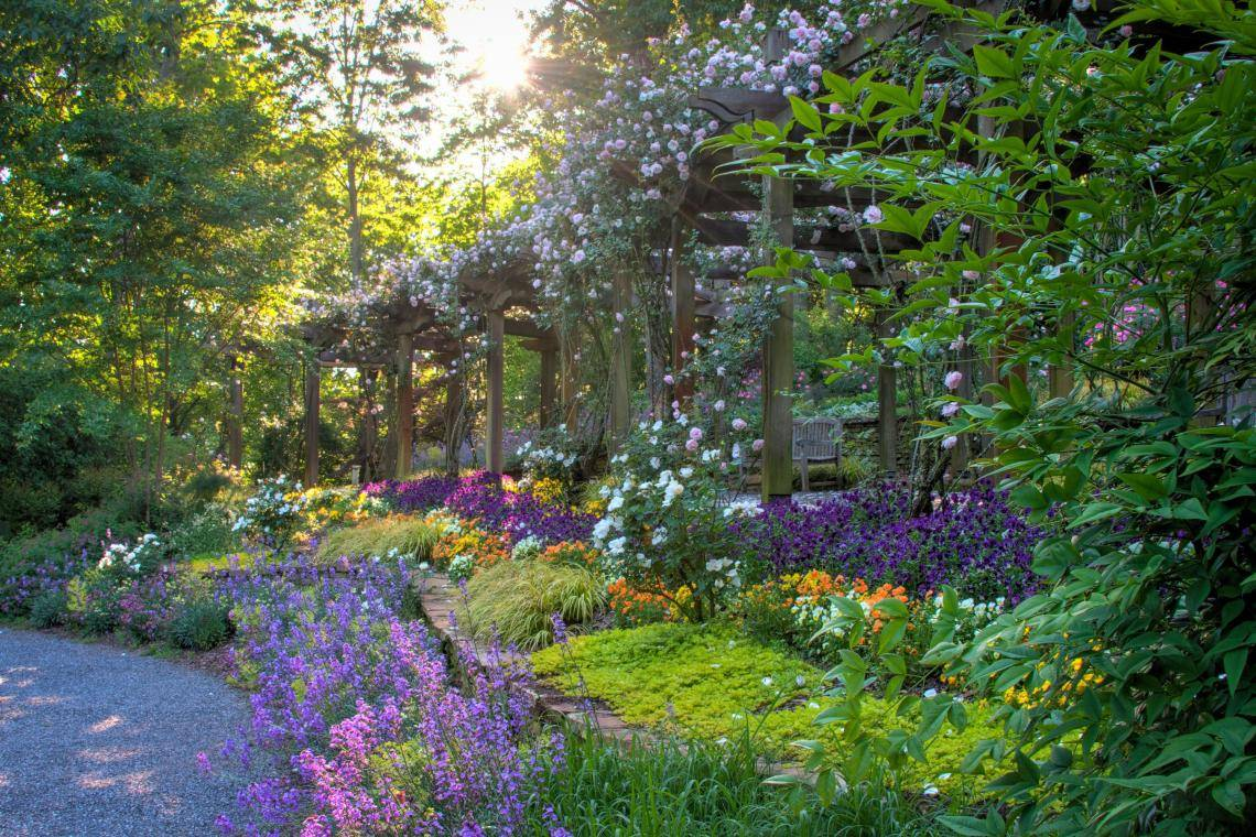 Spring Garden Tips And Inspiration From North Georgia