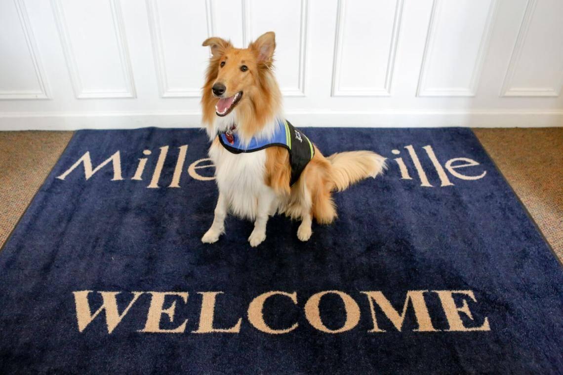 milledgeville a pet friendly guide official georgia tourismmilledgeville a pet friendly guide