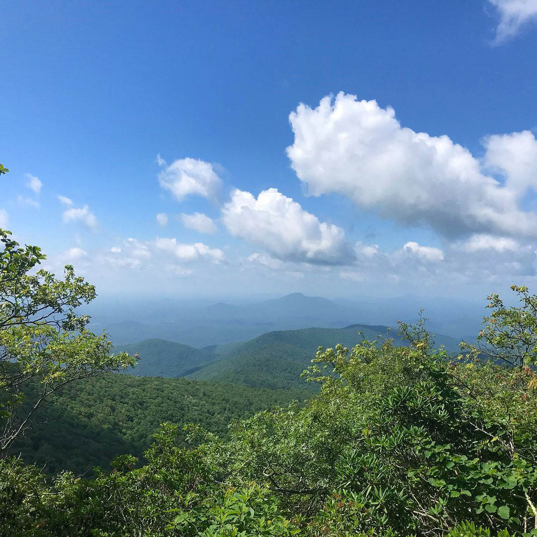 View from Tray Mountain on the Appalachian Trail in Georgia. Photo by @tjw711